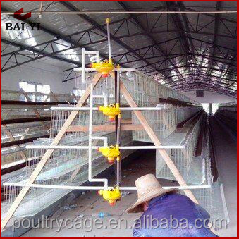 Good Quality Egg Chicken Farms Cage and Business Plan of Poultry Broiler Farm