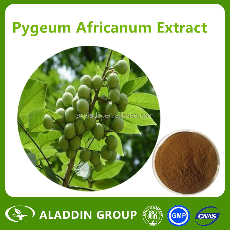 Natural Pygeum Africanum Extract