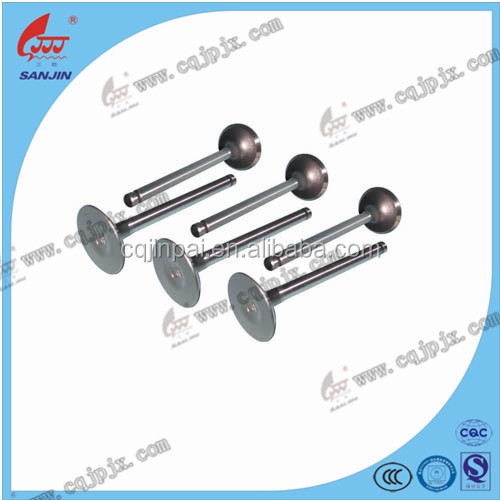 Hot Sell Motorcycle Valve For Cg125,Cg150,Cg200,C100,Gy6-125,WV250