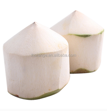 High Quality Automatic green Coconut Peeling/coconut Trimming Machine