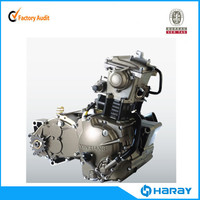 Chinese Lifan CVT 300cc 4 Valve Motorcycle Engine