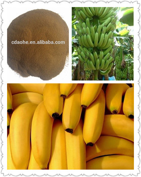 Amino Acid Chelate Ca+B Organic fertilizer function for banana