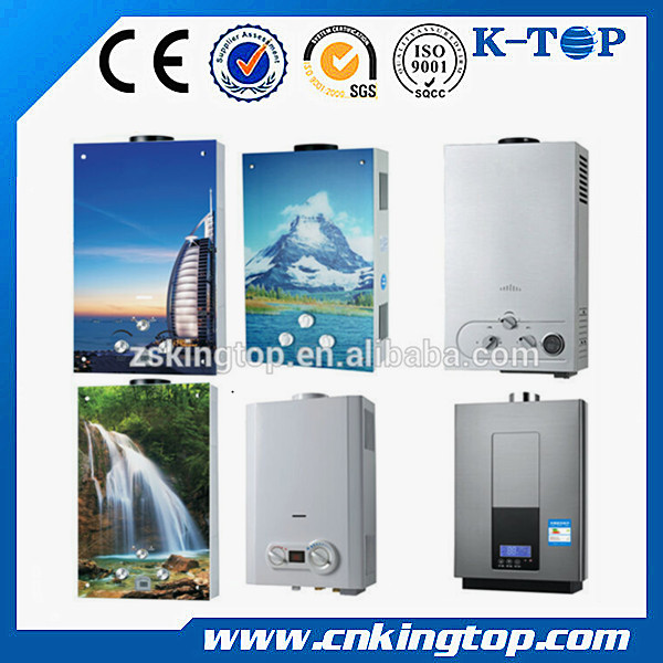 Good Quality 6L 8L 10L 12L 20L 24L Flue Type Gas Water Boiler For Having a Shower