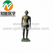BIX-Y1001 Chinese acupuncture model (Antique Bronze)