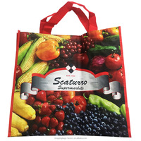 Reusable Lead-free Customized pp woven wine bag