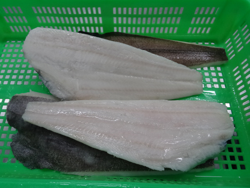 2017 Cheap Price High quality Top grade IQF Fresh Frozen Greenland Halibut Fillet for sale
