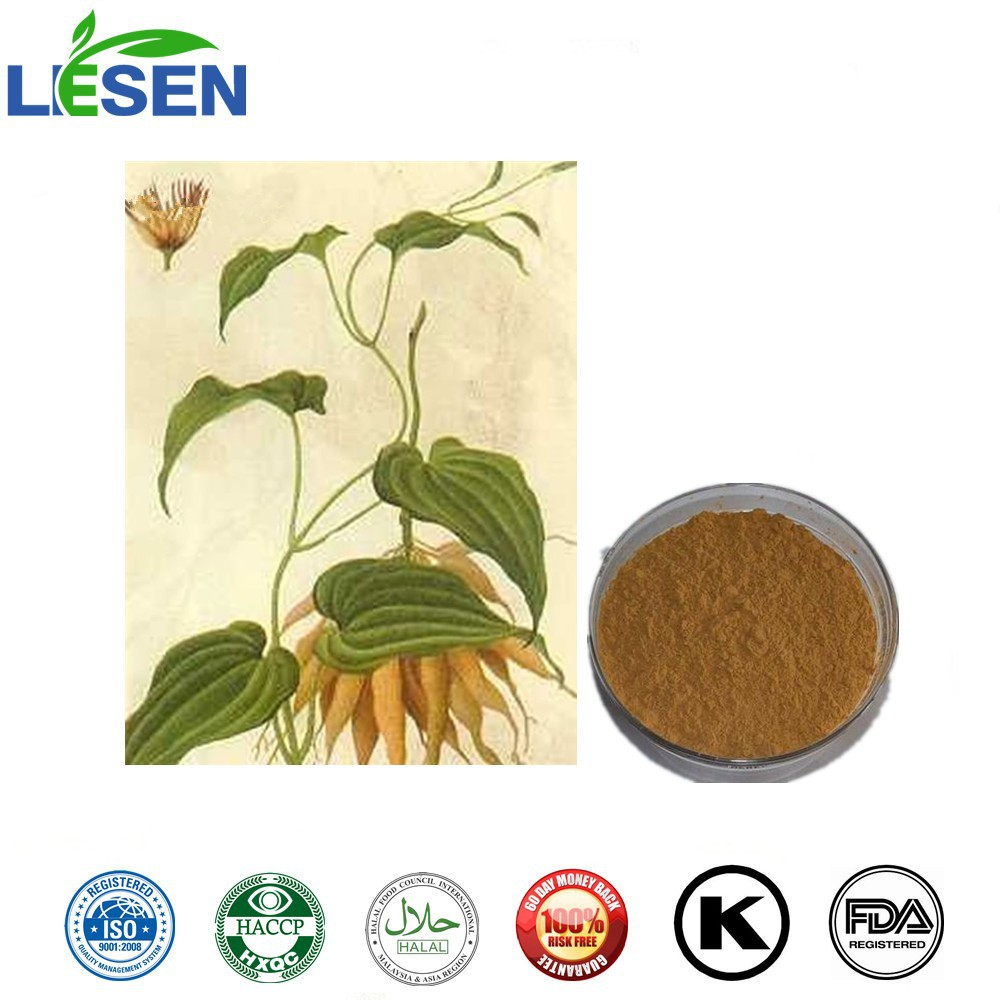 100% Natural Antitussive and Lungs Radix Stemonae /Sessil stemona root tuber Extract Powder 10:1