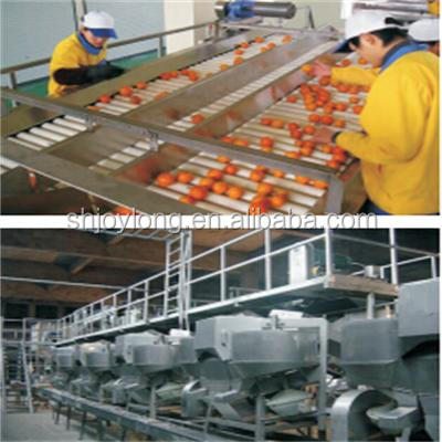 Complete fresh orange drinking juice and concentrated juice processing plant