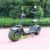 high quality 2000w 1500w fat tire citycoco e scooter/ sports electric motorcycle/electric chariot with golf frame