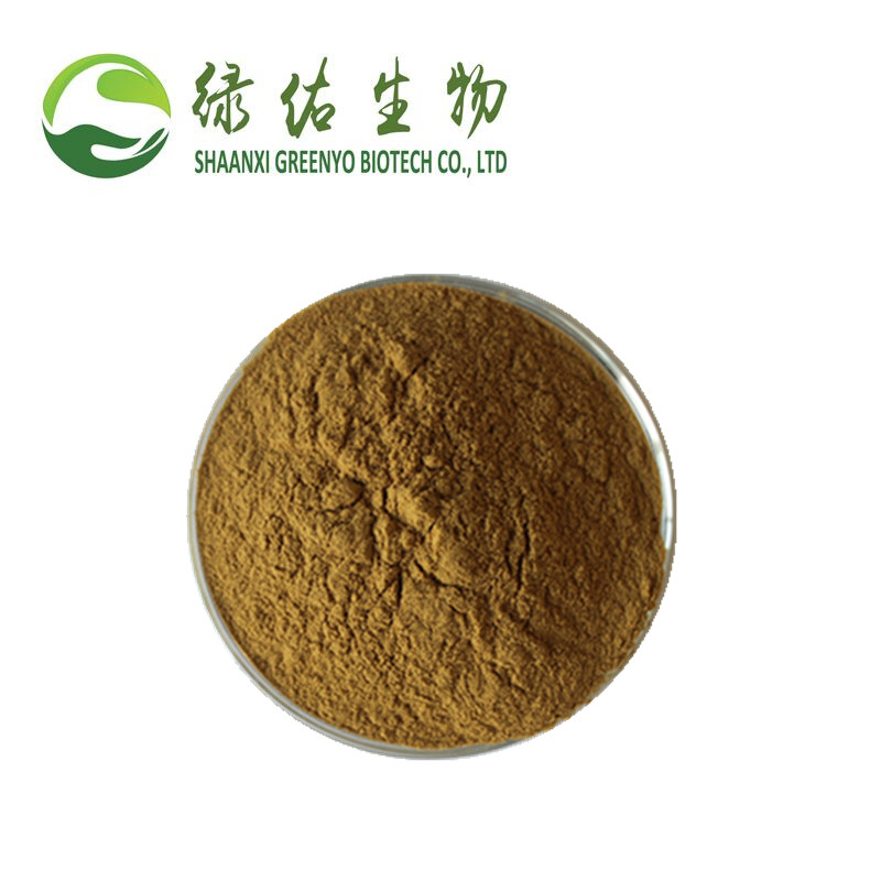 Natural Plant Lotus Leaf Extract Powder Plumula Nelumbinis Extract
