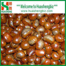 2015 Pure and Natural fresh chestnut in bulk