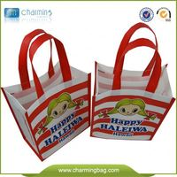 Eco-Friendly Customize Non Woven Tote/Gift Bag