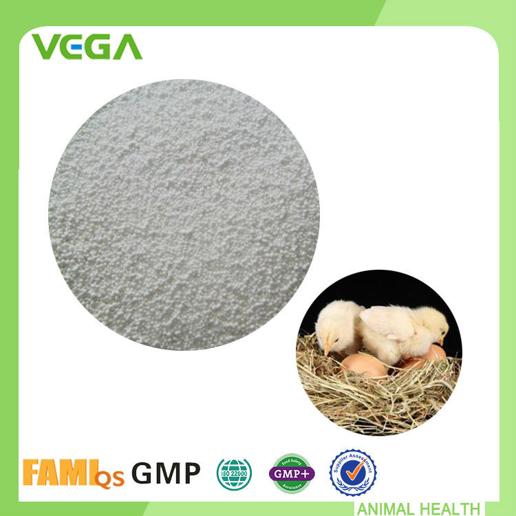 Antibiotics Pharmaceutical Exporters Florfenicol Powder