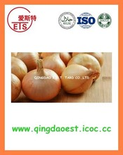 Fresh onion with factory price