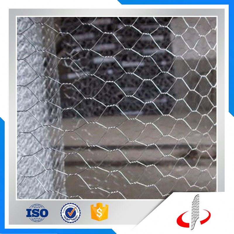 Galvanized Chicken Wire Mesh/ Dog Cages