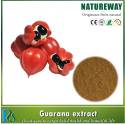 freeze dried Apple juice powder/ apple juice concentrate powder