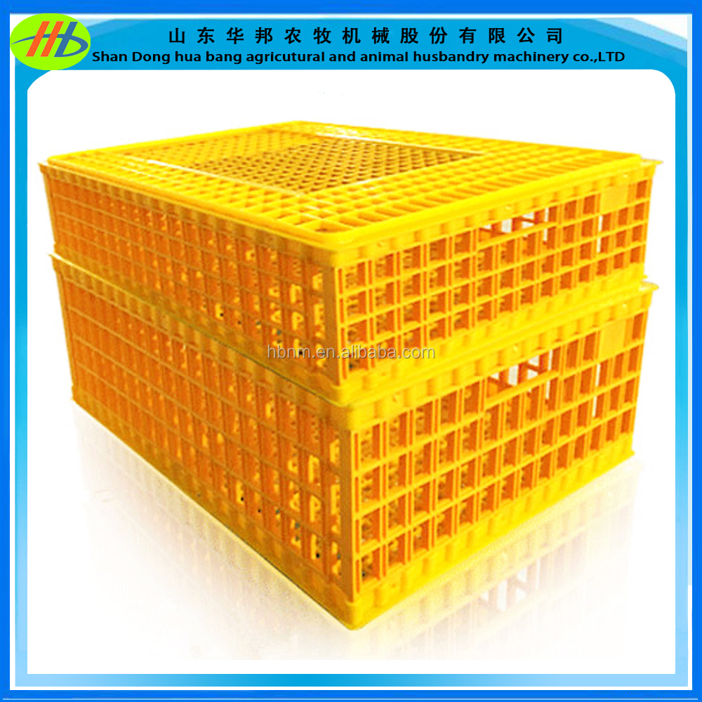 China chicken box plastic transport box poultry feed price exported Malaysia