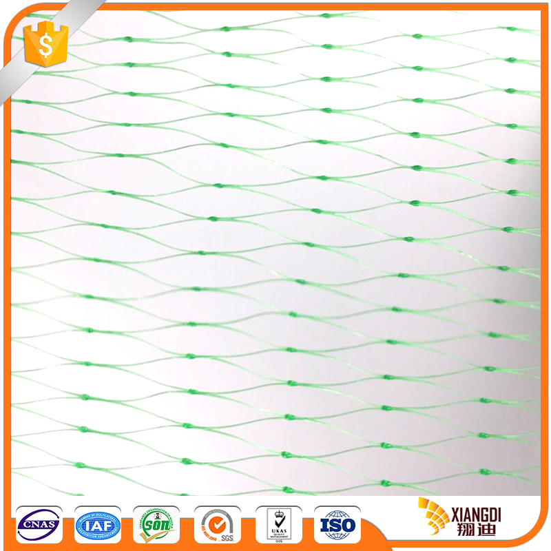 Durable modeling vegetable mesh netting anti bird net