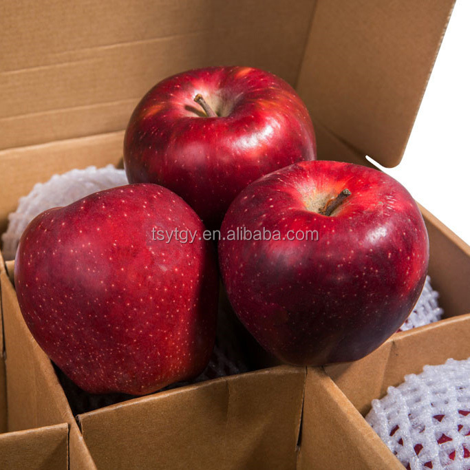 Delicious red huaniu apple sweet taste apples with best price