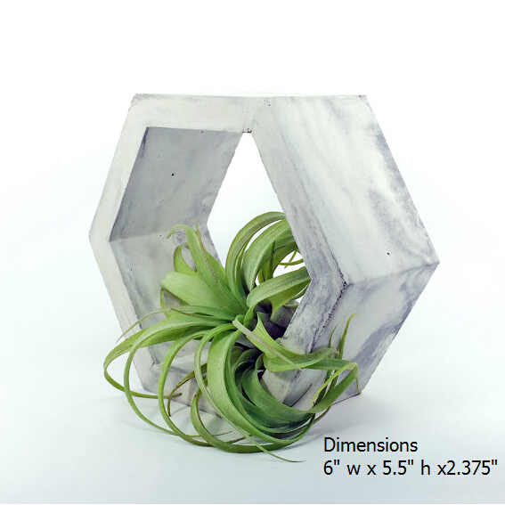 Handmade item Concrete Hexagon Air Plant Holder