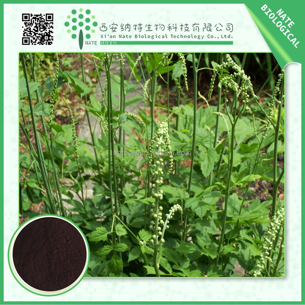 2015 TOP grade natural black cohosh extract powder Triterpene 2.5%-8% FREE sample