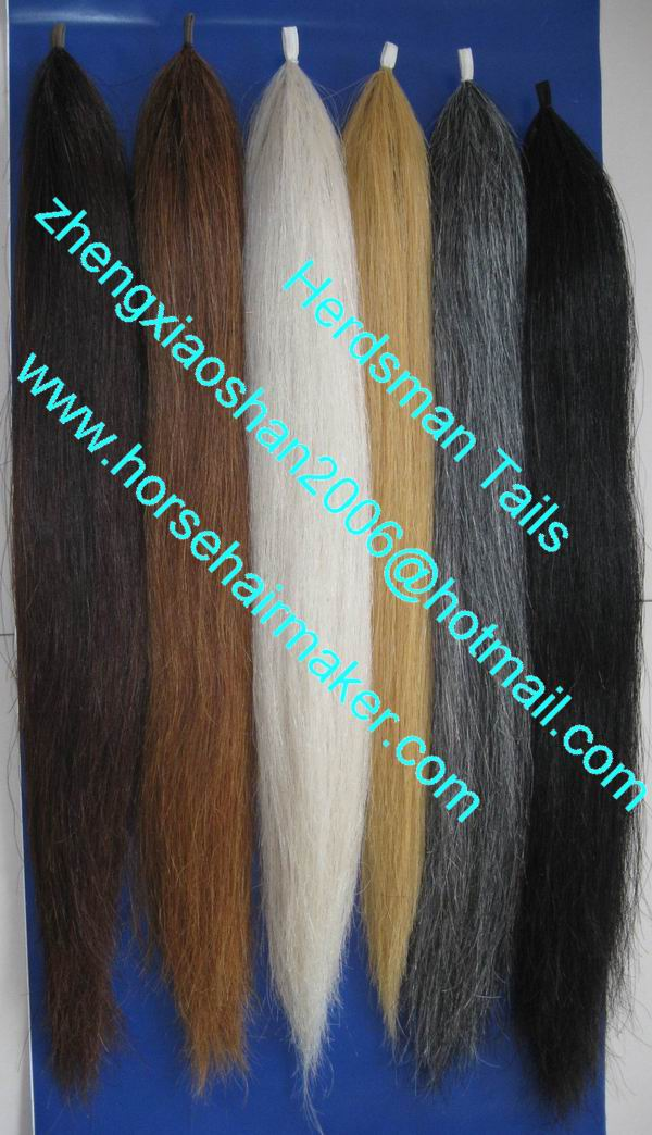 Showing false tails / pony tails / horse care / Training Equipment and other equestrian products