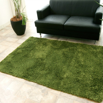 Super Soft Shag Area Silky Smooth Rugs Fluffy Rugs carpets