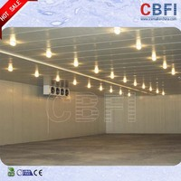CE confirmed cold storage for potato in china