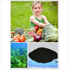 organic fertilizer natural seaweed extract