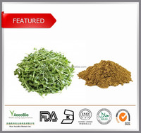 Low price wholesale natural Bacopa monnieri extract, Bacopasides 20%, Bacopasides powder in bulk