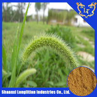 lowest price Horsetail leaf Extract Powder with 8% organic Silica Acid