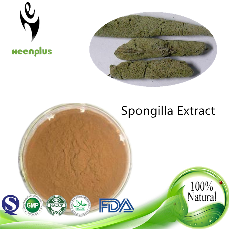 Men's Health care Freshwater Sponge Spongilla extract