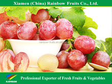 Fresh Chinese table grape red globe grape red grape to India asia market