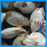 New coming frozen blue crab good sale for your market