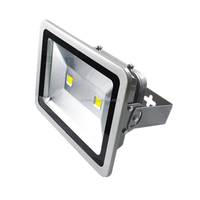 Factory price flood light led flood light 200w led flood light