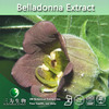 Belladonna extract powder (1%Hyoscyamine ) for health care,Deadly Nightshade Extract