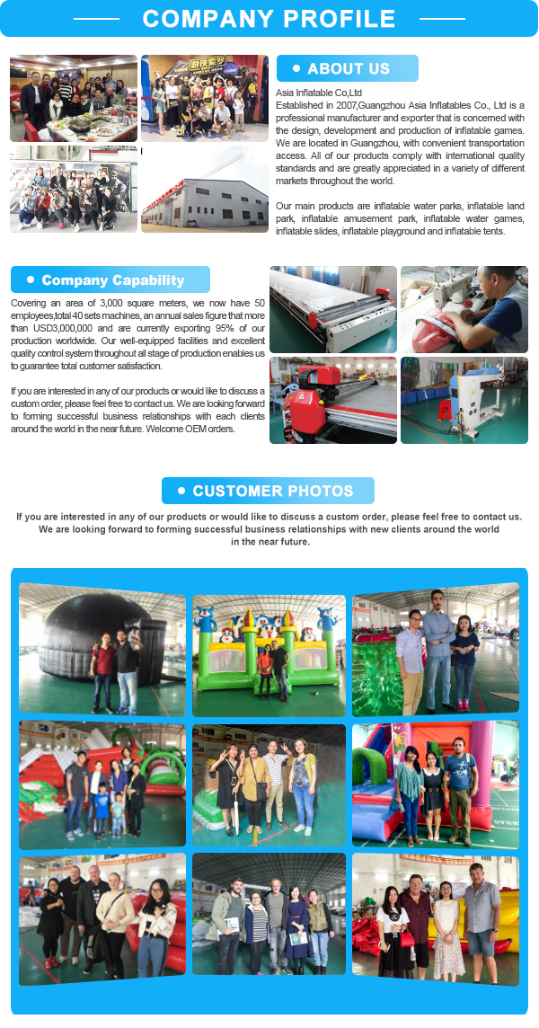 Giant Inflatable Water Slide Playground ,Used Dolphin Water Park Slides For Sale , Inflatable Swimming Pool