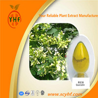 Organic Sophora Japonica Plant Extract P.E.Quercetin Powder China Supplier