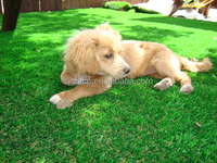 better-selling dog artificial grass with low price