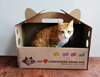 Wholesale Cardboard Cat carrier/Pet carrier
