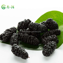 Organic Dried Fruit Black Mulberry