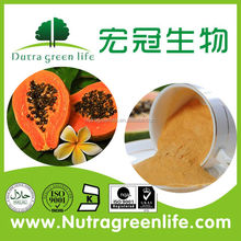 factofy supply 100% Natural Papaya leave extract powder with 10:1