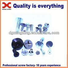 galvanized pan head self tapping screw \Various head screw