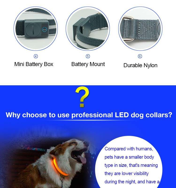 Improved Visibility & Safety Super Bright Glow & Flash USB Rechargeable LED Collar for dog