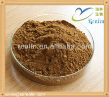 Slimming ingredient Yerba Mate powder 98% in bulk supply