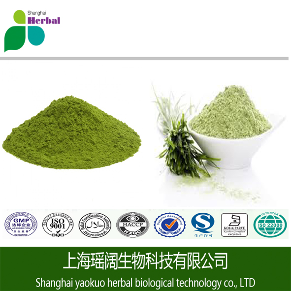 100% Natural young green juice certificated organic barley grass powder