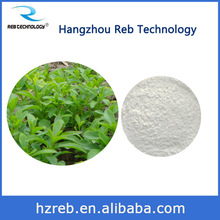 REB TECH STEVIA REBAUDIANA LEAF/STEM EXTRACT