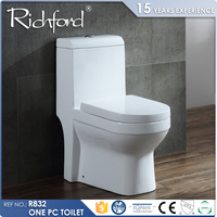 Competitive price strictly one piece standard low flow toilet