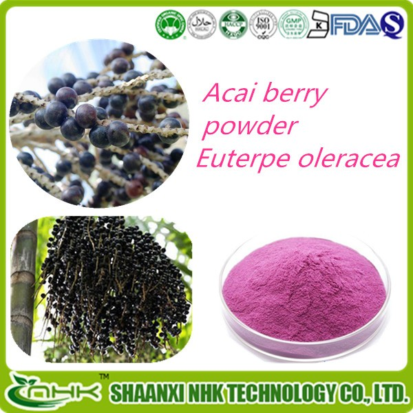 100% Natural acai berry extract 4:1 10:1 ratio powder acai berry extract 20:1