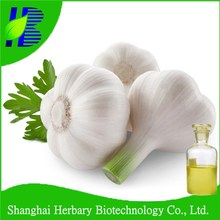 High quality synthetic garlic oil 98%